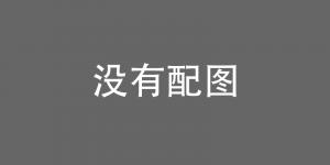 PyTorch 中文文档发布